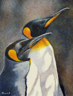 Tracy Hall. King penguins.